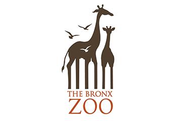 Animal-logo-design